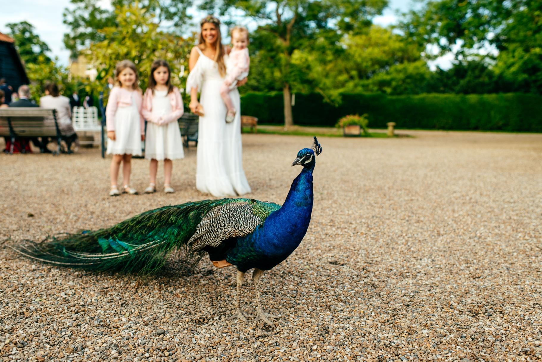 Preston-Court-Fun-Wedding-Photos677