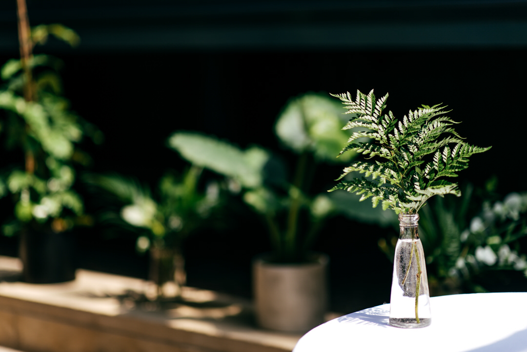 wedding-design-ideas-fern-decoration-devonshire-terrace